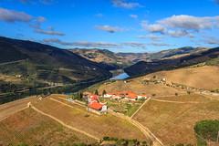 Quinta Nova, Douro Valley (Madhumitha Vasudevan) Tags: travel portugal nova canon landscape vineyard spring europe winery douro quinta riodouro dourovalley canoneos60d travelwithkid