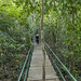 Panama Rainforest Discovery Center gamboa panama pandemonio 2017 - 15