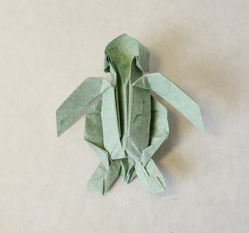 The worlds newest photos of origami and sea flickr hive mind green sea turtle hatchling ponadr tags green sea turtle hatchling origami paper jeuxipadfo Image collections