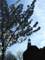 Lighthouse in Spring (Richard and Gill) Tags: london markhouseroad walthamstow lighthouse methodist church chapel architecture methodism walthamforest e17 tower nonconformist downsfieldroad