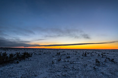 Paukaneva bog (ArtDvU) Tags: paukaneva bog swamp sunset evening afternoon finland winter wideangle 1020 sigma canon eos 7d mkii landscape southern ostrobothnia seinäjoki