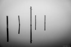 Fog on the Water #2 (kartofish) Tags: corecreekpark buckscounty lakeluxembourg monotone blackandwhite abstradct fog pennsylvania reflection foggymorning reflections water langhorne