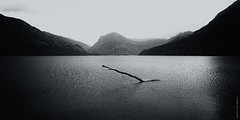 Buttermere (II) (Ian Smith (Studio72)) Tags: canon60d canon1585mm canon uk england cumbria lakedistrict buttermere lake landscape mountains water ripples branch scene scenery scenic bw bnw nb blackandwhite mono monochrome contrast shadows silhouette studio72 nationaltrust