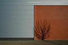 ALLES NUR FASSADE (rolleckphotographie) Tags: architecture architektur sony simplicity stefanrollar rolleckphotographie zeiss ilce7m2 a7ii urban minimal minimalism facade fassade