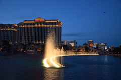 Night at the Bellagio