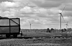 Green and brown energy (BogRailwayMan) Tags: bordnamona bordnamonarailways lisheen narrowgauge narrowgaugerailway industrialrailway industriallandscapes railway peatrailways windturbine