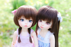 ♥ (Lunelle♥) Tags: fairyland littlefee ltf bjd ball jointed doll pipi leah