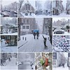 Snow blizzard in the heart of Amsterdam (B℮n) Tags: fdsflickrtoys amsterdam bloemgracht snow covered bikes bycicles eerstebloemdwarsstraat holland netherlands canals winter cold wester church jordaan street anne frank house dutch people scooter gezellig cafés snowy snowfall atmosphere colorful windows walk walking bike cozy westerkerk rondvaartboot boat light rembrandt corner water canal weather cool sunset 1000km file celcius trees mokum pakhuis grachtengordel unesco world heritage sled sleding slee seagull lekkersluis nowandthen meeuw seagulls meeuwen bycicle 1°c sun shadows sneeuw brug mosaic best collage collection