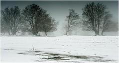 nieves58 (Ezcurdia) Tags: snow miguel de nieve nevada icy hielo pamplona aralar urbasa ibaeta san frozentrees artesiana lindux nieve aralar lanzurda pamplona