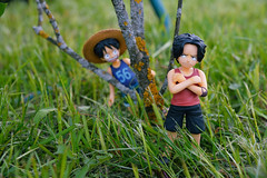 Hide-n-seek (red-anchous) Tags: game anime toys ace onepiece figures luffy megahouse jfigure animefigures