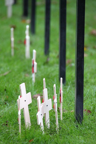 Little wooden crosses on Remembrance Day, York