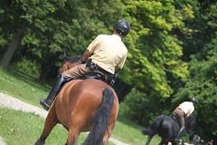 Reiterstaffel Mnchen (CA_Rotwang) Tags: horse munich mnchen bayern bavaria boots police riding cop mounted garten pferd polizei equestrian officer englischer ridingboots reiterstaffel reitstiefel berittene polizeireiter