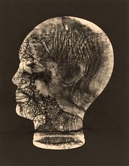 Head (ahpook12) Tags: abstract glass death experimental faces antique contemporary fineart creepy photogram rayograph alternativeprocess toner photograms michaelmendez