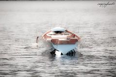 The obligitary boat photo (Carpejugleum) Tags: blue lake boat fishing moody rowing floaty carragh carpejugleum