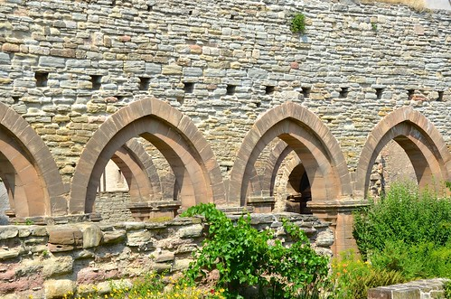 Memleben (Saxe-Anhalt), ruines de l'abbatiale - 30