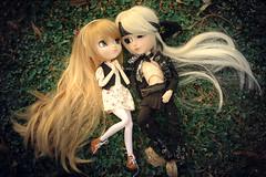 Shinku y Gal (mymuffin_15) Tags: cute love canon eos rebel 50mm doll leo sweet dal gal wig pullip 18 gyro galileo isul shinku obitsu taeyang t1i rrabit