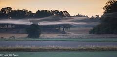 Morgondimma Skammelstorp (Hans Olofsson) Tags: morgondimma september skammelstorp lugn peaceful mist dimma tåge sweden nikon morning morgon landskap landscape höst autum slöjor dimmslöjor