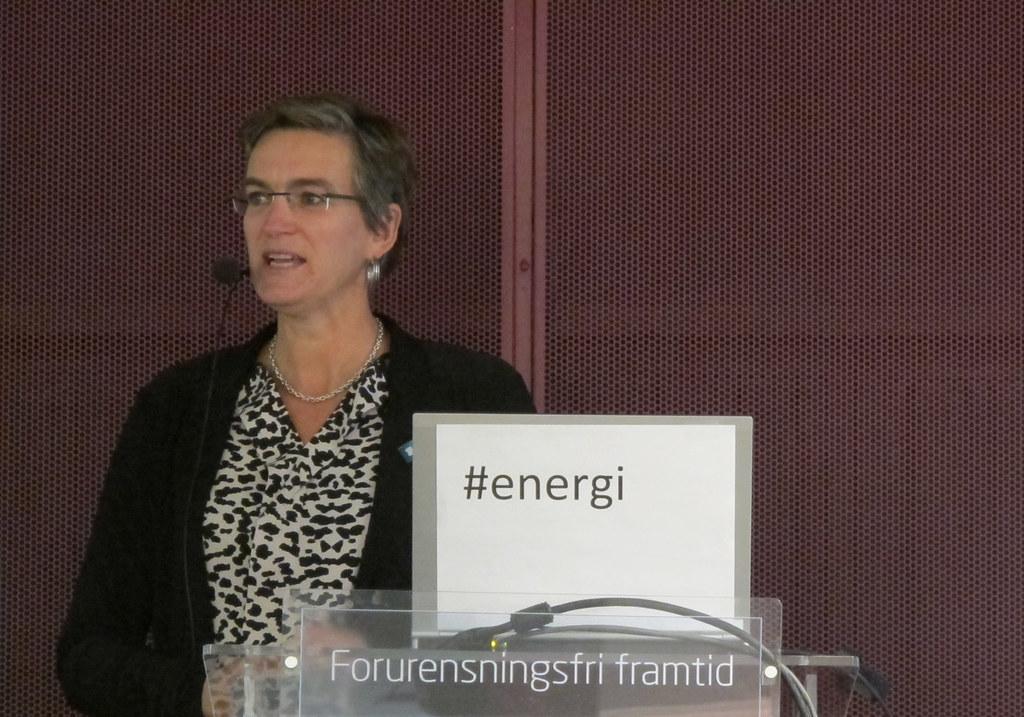 Direktør i Miljødirektoratet Ellen Hambro innledet seminaret om vannkraft. Foto: Kjerst Dørumsgaard Moxness, Miljødirektoratet