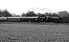 BR Standard 5 No 73129 in the rain (Andrew Edkins) Tags: blackandwhite geotagged steamtrain steamtrains greatcentralrailway britishrailways gcr preservedrailway woodthorpe caprotti 73129 steamgala standard5