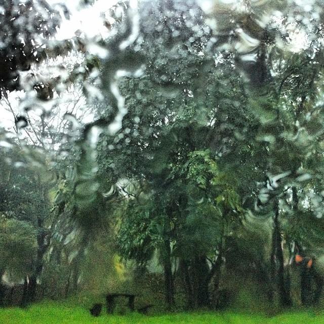 La pioggia è la natura che non ce la fa più a stare zitta.