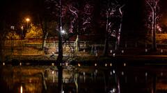 Allhelgona i Linköping (Mattias Lindgren) Tags: autumn candles höst linköping 50mmf14 stångån allhelgona nikond600