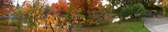 Nakajima Park Panorama 1 (sjrankin) Tags: park panorama fall japan sapporo pond hokkaido fallcolor path edited walkway   sapporojapan  nakajimapark nakajimakoen 29october2013