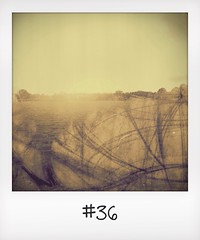 "#DailyPolaroid of 3-11-13 #36 • <a style=""font-size:0.8em;"" href=""http://www.flickr.com/photos/47939785@N05/10779010663/"" target=""_blank"">View on Flickr</a>"