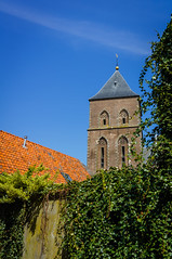Church tower in Kampen (Fredde Nilsson) Tags: blue roof red orange plant holland green church netherlands leaves wall thenetherlands ivy vine churchtower tiles creeper kampen overijssel clutching