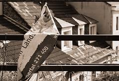 """Wuppertal-Elberfeld. Nordbahntrasse. """"Lands"""" (wwwuppertal) Tags: blackandwhite bw film monochrome sepia germany deutschland noiretblanc land nrw sw monochrom wuppertal bergischesland analogphotography nordrheinwestfalen canoneos650 elberfeld kodakgold200 northrhinewestphalia schwarzweis analogefotografie analogphotograph analoguephotography canonef100mmf28macro mirke nordbahntrasse nordbahn schwarzweiskonvertierung rheinischebahn dietrasse"""