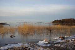 Water is freezing (hessu_man) Tags: winter sunrise finland helsinki europe outdoor lauttasaari unedited waterscape sonya7 ilce7 fe35mmf28za