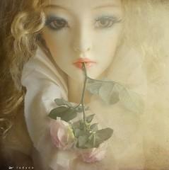hanging on your every word (l u d y c o) Tags: light rose flora rosa lips softfocus luce goldenlight labbra verbum pendodalletuelabbra