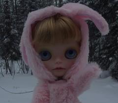 Sunny Snowbunny