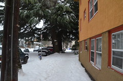 "DSC_0068 (Lynette_1_2_3) Tags: ""cold weather"" ""snow"" ""wind"" ""february ""©portlandoregondailyphoto 2014"""