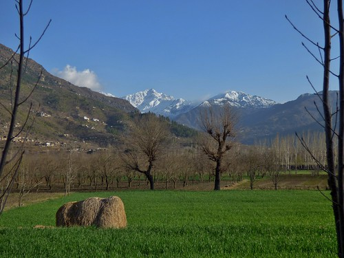 Early Spring in the Swat Valley, Khyber Pakhtunkhwa Province, Pakistan - March 2014