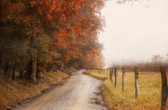 Only Halfway There (karenhunnicutt) Tags: road autumn art fall fog tennessee peaceful northcarolina thejourney smokymountains cadescove greatsmokymoutainnationalpark karenmeyere karenhunnicutt karenmeyer karenhunnicuttphotographycom minneapolisfineartphotographer