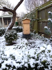 A customers Warre Beehive in their snowy garden