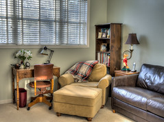 The Afternoon Den (lclower19) Tags: home den chair couch desk decoy duck clock lamp bookcase blanket plaid