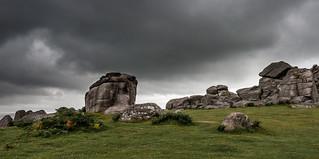 Bonehill Rocks on Dartmoor_Nik-9669