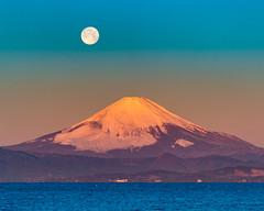 Red Fuji and full moon (shinichiro*) Tags: 20170212ds43305 2017 crazyshin nikond4s afsnikkor70200mmf28ged february winter fuji 秋谷海岸 富士 立石 fullmoon yokosuka kanagawa 32877483915 candidate
