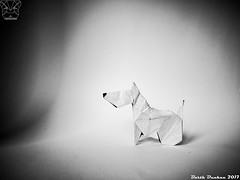 Simple Bull Terrier - Barth Dunkan (Magic Fingaz) Tags: anjing barthdunkan dog origami origamidog perro chien hund 犬 狗 개 chó hond köpek pies пас пес собака หมา