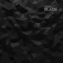 Abstract black 3D geometric polygon facet background mosaic made by edgy triangles (shadowbilgisayar) Tags: background triangle 3d facet polygon abstract mosaic faceted texture design futuristic black light pattern modern concept crystal geometric backdrop art wallpaper edge diamond effect polygonal graphic contrast shadow geometry digital decorative patternt edgy displacement structure trendy complex triangles shape sharp shapes elements element render colour geometrical polygons artwork detail czechrepublic
