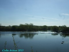 WATER SCENE (Colin Avison) Tags: water attenborough naturereserve quarry beeston nottinghamshire wildlifetrust