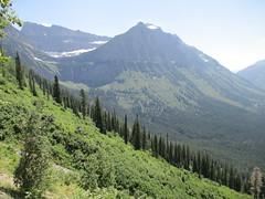 Glacier National Park (Flathead County, Montana) (courthouselover) Tags: landscapes montana mt unesco rockymountains glaciernationalpark nationalparks unescoworldheritagesites watertonglacierinternationalpeacepark flatheadcounty nationalparksystem