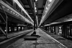 (flallier) Tags: train bw blackandwhite noiretblanc bnw tgv centre technique silhouette voieferrée chemindefer railroad trains néons
