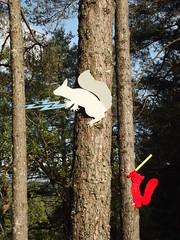 red rebels (2008) (ztephen) Tags: art forest scotland squirrels aberfoyle lochard
