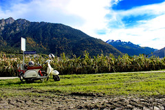 Around the World (Sarah Teca Photography) Tags: mountains schweiz feld moped
