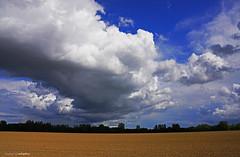 cloud streaming