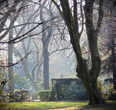 A Peaceful Place... (akal_flickr) Tags: trees fleurs quiet place et paysages