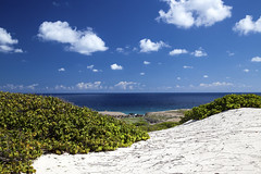 Sand Dunes and Caribbean View from Arikok National Park in Aruba (Critter Seeker) Tags: ocean sea sky plants nature clouds canon landscape nationalpark sand natural dunes dune aruba caribbean sanddunes arikok caribbeansea arikoknationalpark 5dmarkii canon5dmarkii