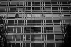 Meurtrires (Sylvain Courant photographies) Tags: bw paris sad noiretblanc jardin nb triste montparnasse hlm fenetre immeuble logement atlantique meurtrieres sylvaincourant